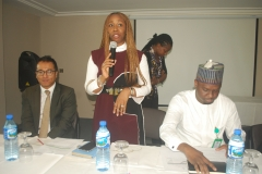 Lolade Abiola Adressses Roundtable