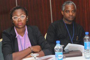 Nigeria Mini Grid & Off-Grid Electrification Clinics