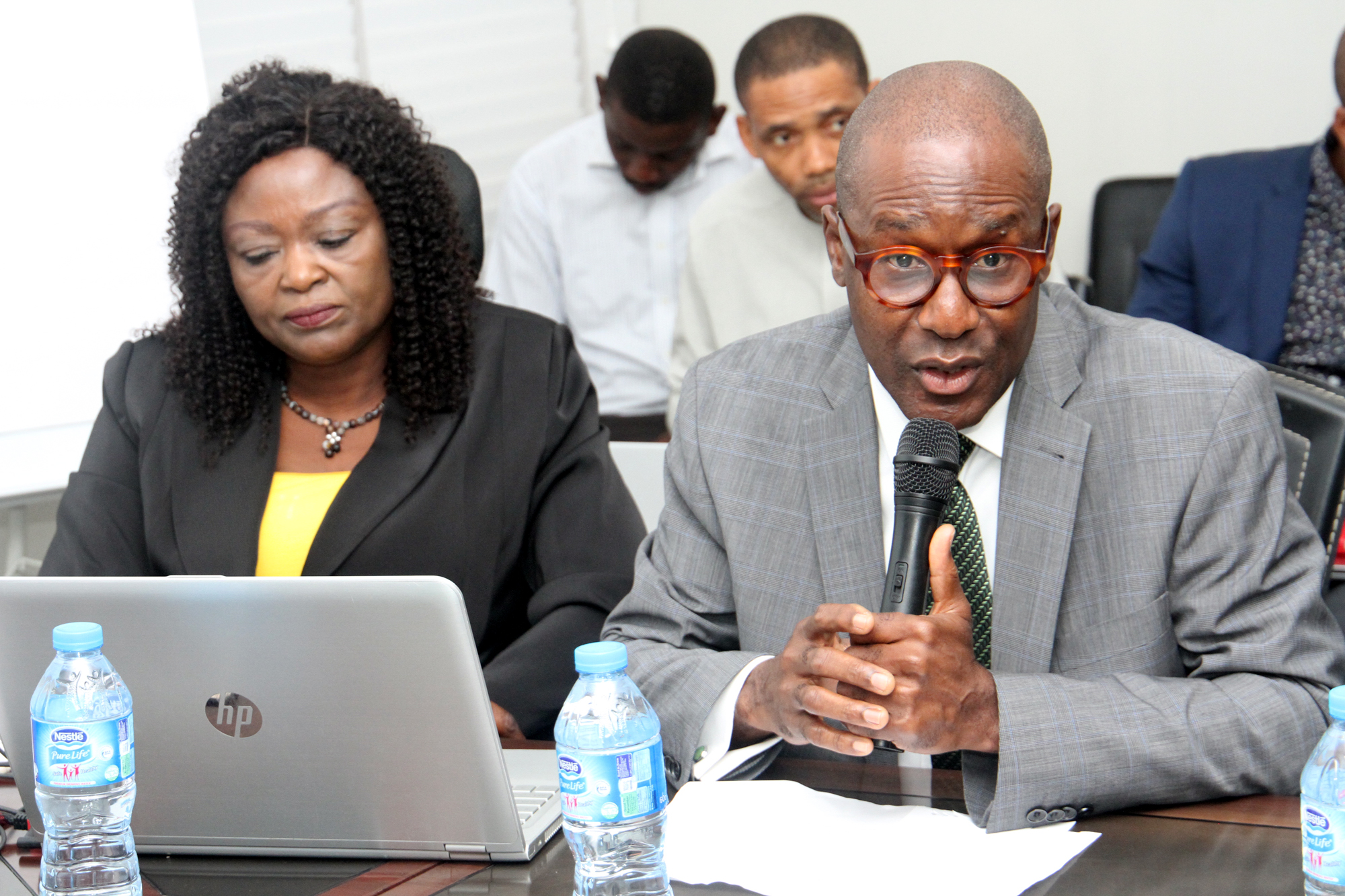 The Mission Launch of Nigerian Electrification Project